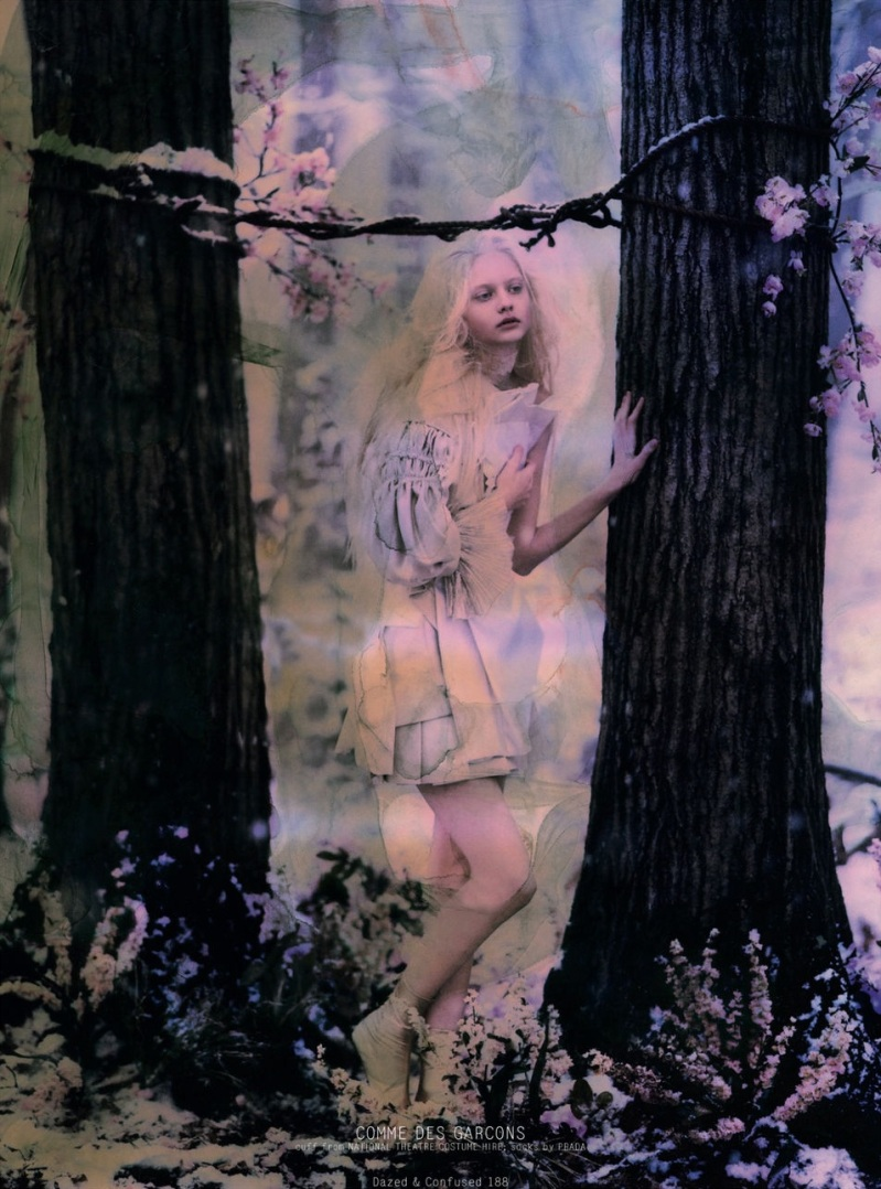 Dazed & Confused : Fashion Fairytale
