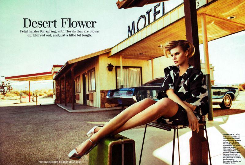 Allure - Desert Flower -5