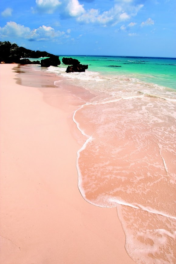 Pink Sand Beaches, Bermuda